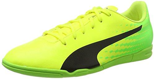 Puma Herren Evospeed 17.5 IT Fußballschuhe, Gelb (Safety Yellow-Puma Black-Green Gecko 01), 44.5 EU